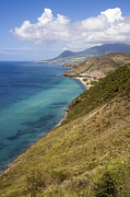 Kitts Posters - Coastline In St Kitts Poster by Peter Phipp