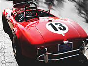 Best Of Show Prints - Cobra in Red Print by Curt Johnson