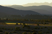 Crops Photos - Cochabamba Valley. Republic of Bolivia. by Eric Bauer