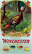 Winchester Prints - Cock Of The Woods Print by Unknown