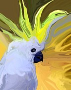 White Cockatoo Prints - Cockatoo Print by Chris Butler