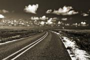 Duotone Prints - Cocodrie Highway Print by Scott Pellegrin