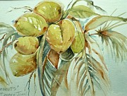 Barbra Joan Araneo - Coconuts in the Keys