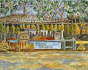 Fruit Stand Paintings - Cocos Helados by Karin Griffiths