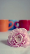 Red Cup Coffee Posters - Coffee Cups and Ranunculus Poster by Kristin Kreet