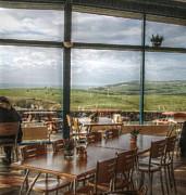 Cindy Nunn - Coffee with a View