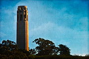 Sfo Framed Prints - Coit Tower Framed Print by Doug Sturgess