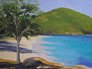 Snorkeling Painting Originals - Coki  Beach  U S V I by Robert Rohrich