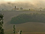 Winery Photography Prints - Col di Sasso Print by William Fields