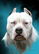 Animals Digital Art - Cold as Ice- Pit Bull by Spano by Michael Spano