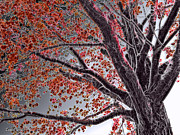 Freezing Mixed Media Prints - Cold Autumn Print by Stephen Younts