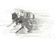 Bumblebee Drawings - Cold Bumblebee by Dawn Senior-Trask