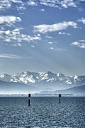 Azure Metal Prints - Cold Lake Metal Print by Joana Kruse