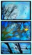 Gina Signore Digital Art - Cold rainy day Scenes from the garden by Gina Signore