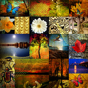 Leaf Collage Prints - Collage of colors Print by Mark Ashkenazi
