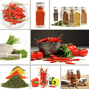 Culinary Prints - Collage of different colorful spices for seasoning Print by Sandra Cunningham