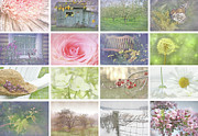 Hydrangea Posters - Collage of seasonal images with vintage look Poster by Sandra Cunningham