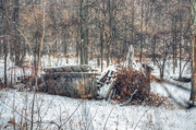 Log Cabins Art - Collapsed Barn or Shed In Middle of Woods by C Wayne Hennebert