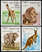 Stamp Collection Art - Collection of wild animals stamps. by Fernando Barozza