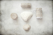 Found Objects Prints - Collections Seashells and Wine Corks Print by Toni Hopper