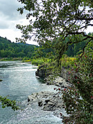 Umpqua River Framed Prints - Colliding Rivers Framed Print by Methune Hively