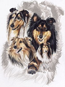 Canine Mixed Media Prints - Collie Print by Barbara Keith