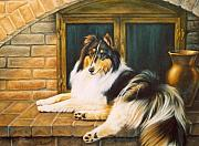 Sheltie Framed Prints - Collie on the Hearth Framed Print by Karen Coombes