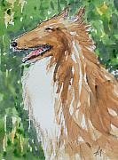 Dog Portrait Originals - Collie by Pete Maier