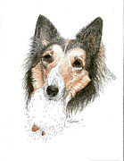 Collie Drawings Posters - Collie Poster by Therese A Kraemer