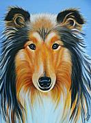 Collie Painting Framed Prints - Collie Framed Print by Valentina Vassilieva
