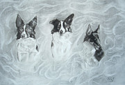 Border Drawings - Collies in the Mist by C nick Tuigsinn