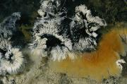 Kamchatka Prints - Colonies Of Filamentous Bacteria In An Print by Carsten Peter