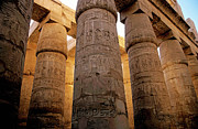 Carvings Posters - Colonnade in the Karnak Temple Complex at Luxor Poster by Sami Sarkis