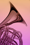 French Horn Prints - Color French Horn Print by M K  Miller