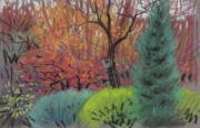 Autumn Foliage Pastels Prints - Color Harmonies Print by Donald Maier