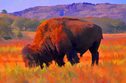 Bison Digital Art - Color Me Wild by JohnD Smith