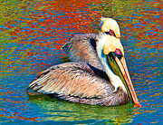 Colorful Bird Prints - Color My Pelicans by Carmen Del Valle