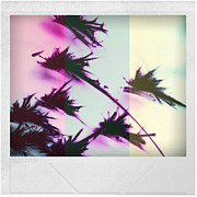 Holley Jacobs Metal Prints - Color Of The Rainbow Metal Print by Holley Jacobs
