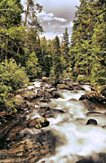 Colorado Stream Prints - Colorado 7 Print by Chris  Mautz