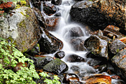 Colorado Stream Prints - Colorado 8 Print by Chris  Mautz