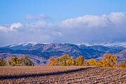 Autumn Prints Prints - Colorado Autumn Morning Scenic View Print by James Bo Insogna