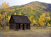 Colorado Cabin Print by Marty Koch
