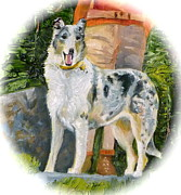 Collie Drawings Posters - Colorado Collie Hiker 2 Poster by Susan A Becker