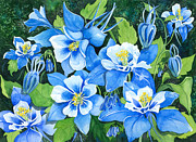 Blue Flowers Paintings - Colorado Columbines by Barbara Jewell