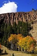 Colorado Fall 4 Print by Marty Koch