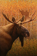 Fall Paintings - Colorado Moose by James W Johnson