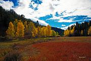 Colorado Mountain Autumn View Print by Stephen  Johnson