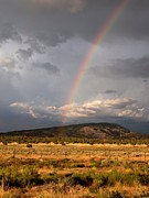 High Desert Photos - Colorado Rainbow by Joshua House