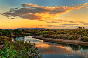 Desert Photography Posters - Colorado River Backwater Sunrise Poster by La Rae  Roberts