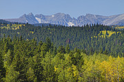 Colorado Mountain Greeting Cards Prints - Colorado Rocky Mountain Continental Divide Autumn View Print by James Bo Insogna
